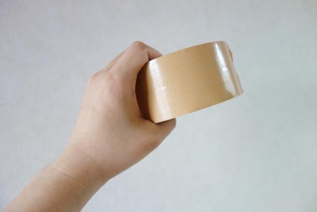 ガムテープでカメムシを挟んでしまう